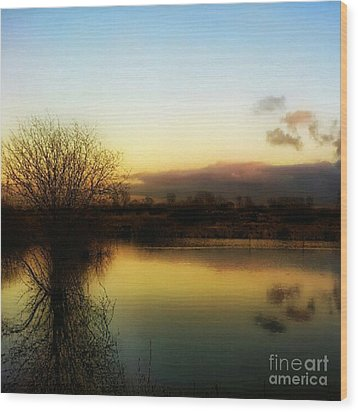 Sunset Over The Lake Wood Print by Isabella F Abbie Shores
