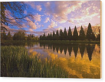 Sunset Reflection On A Pond, Portland Wood Print by Craig Tuttle