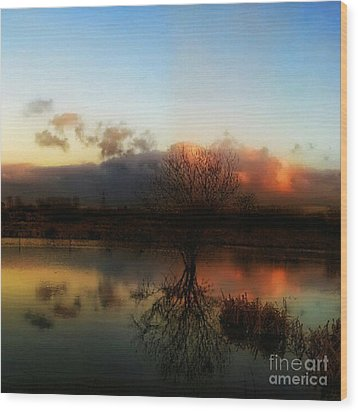 Sunset Reflections Wood Print by Isabella F Abbie Shores FRSA