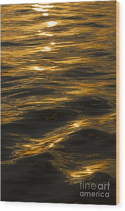 Sunset Reflections Wood Print by Dustin K Ryan