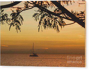 Sunset Sail Wood Print by Rene Triay Photography