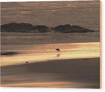 Sunset Shimmer Beach Wood Print by Debra     Vatalaro