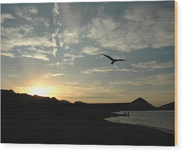 Sunset Soaring Wood Print by Jonathan Schreiber