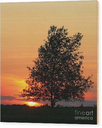 Sunset Square Wood Print by Angela Rath