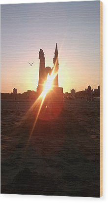 Wood Print featuring the photograph Sunset Sunlit Sandcastle With Flying Bird On A Chicago Beach by M Zimmerman
