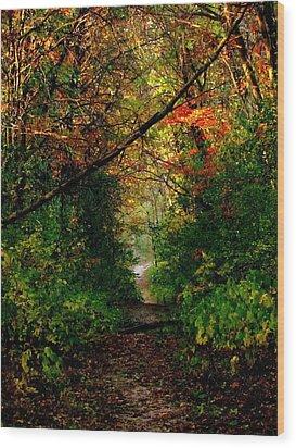 Sunset Through Trees Wood Print by Bridget Johnson