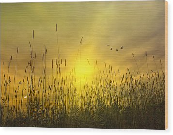 Sunsets To Remember Wood Print by Tom York Images