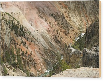 Wood Print featuring the photograph Sunshine On Grand Canyon In Yellowstone by Living Color Photography Lorraine Lynch