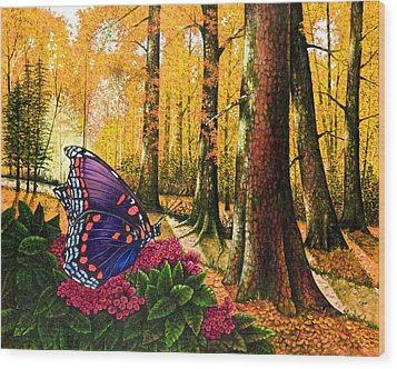 Sunshine Traveler-red Spotted Purple Wood Print by Michael Frank