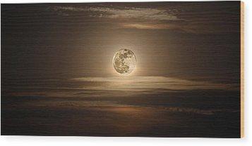 Super Moon Of 2012 Wood Print by Elizabeth Hart