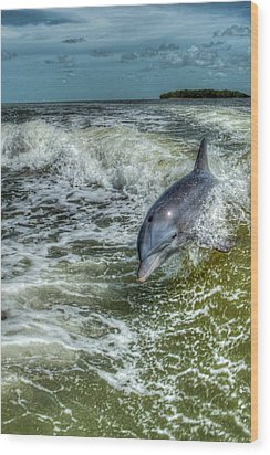 Surfing Dolphin Wood Print by Nick  Shirghio