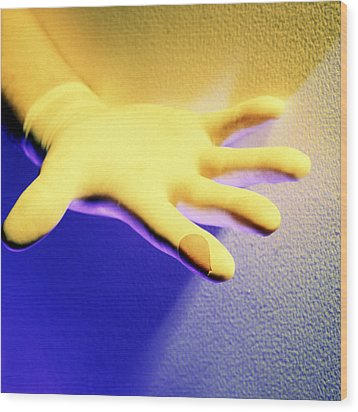 Surgical Glove Wood Print by Johnny Greig