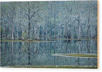 Surreal Blue Wood Print by Denis Lemay