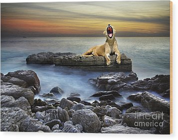 Surreal Lioness Wood Print by Carlos Caetano