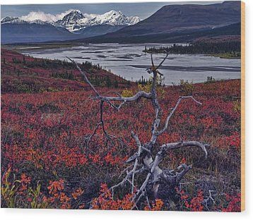 Susitna River Wood Print