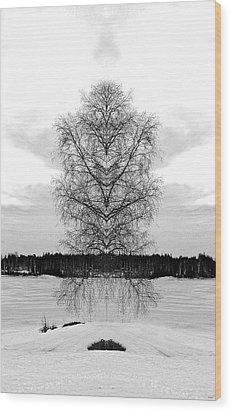 Suspended Tree Wood Print