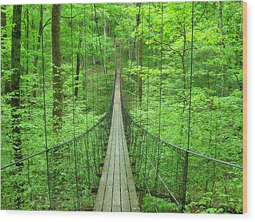 Suspension Bridge Wood Print by Daniel Muller