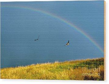 Swallows Under A Rainbow Wood Print by Thomas R Fletcher