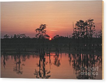 Wood Print featuring the photograph Swamp Sunset by Luana K Perez