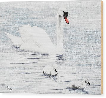 Wood Print featuring the drawing Swan Family by Brent Ander