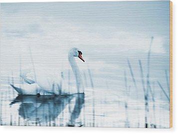 Swan Wood Print by Jaroslaw Grudzinski
