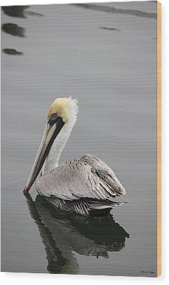Swan Of The Gulf Coast Wood Print by Deborah Hughes
