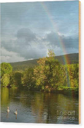 Swans And Double Rainbow 2 Wood Print by Debra Collins