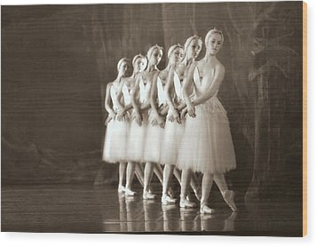 Swans Lined Up Wood Print by Kenneth Mucke