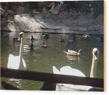 Swans On The Lake Wood Print by De Beall