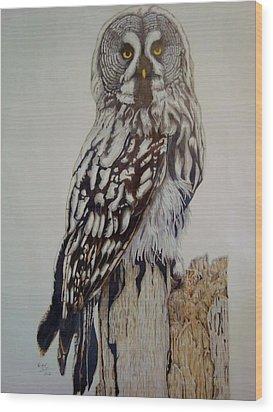 Swedish Uwl Wood Print by Per-erik Sjogren