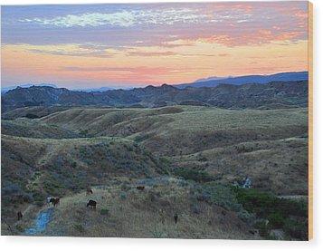 Sweet So Cal Sunset Wood Print by Lynn Bauer