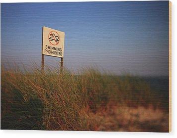 Swimming Prohibited Wood Print by Rick Berk