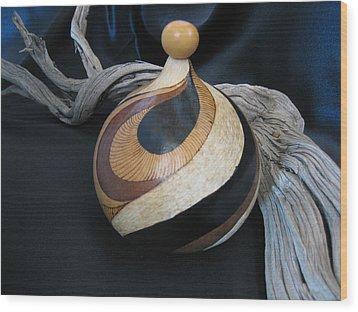 Swirl Gourd 2 #gn30 Wood Print by Barbara Prestridge