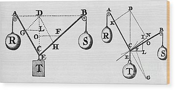 Symbol Language Of Statics Wood Print by Science Source