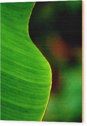 Symmetry Wood Print by Steven Huszar