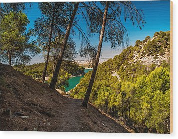 Symphony Of Nature. El Chorro. Spain Wood Print by Jenny Rainbow
