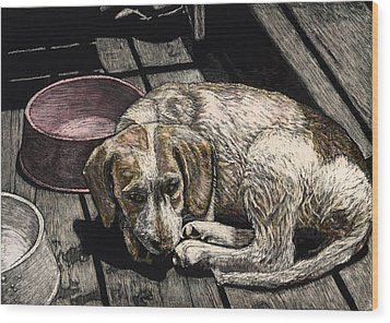 Taffy The Dog Wood Print by Robert Goudreau