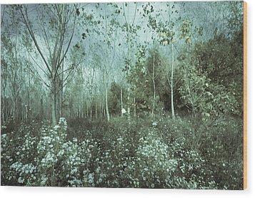 Tale Of The Seasons Wood Print by Akos Kozari