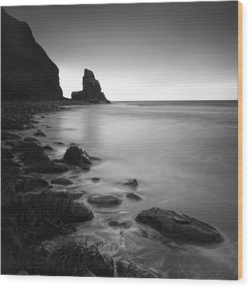 Talisker Rock Wood Print by Nina Papiorek