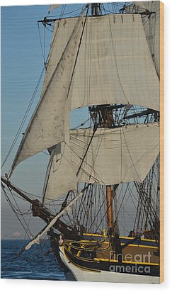 Tall Ship   Wood Print by Timothy OLeary