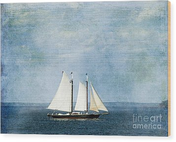 Wood Print featuring the photograph Tall Ship by Alana Ranney