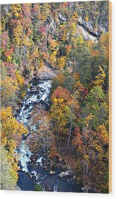Tallulah River Gorge Wood Print by Susan Leggett