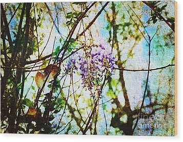Tangled Wisteria Wood Print by Andee Design