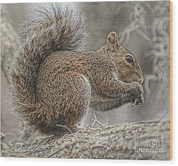 Tasty Tidbits Wood Print by Deborah Benoit