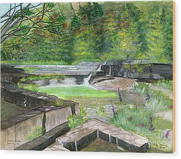 Wood Print featuring the painting Taughannock Vista Ithaca New York by Melly Terpening