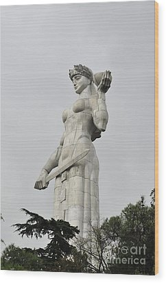 Tbilisi Mother Of Georgia Statue Wood Print by Amos Gal