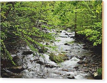 Tea Creek Wood Print by Thomas R Fletcher