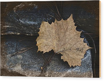 Tears To Fall Wood Print by Kelly Rader