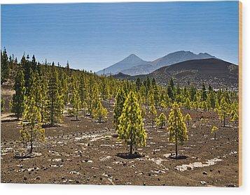 Technicolor Teide Wood Print