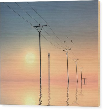 Telephone Post At Sunset Wood Print by Kurtmartin